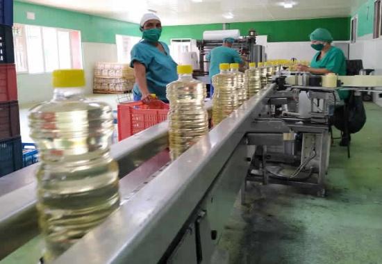 Fábrica de Vinagre y Vino Seco camagüeyana mantiene inocuidad y calidad productiva