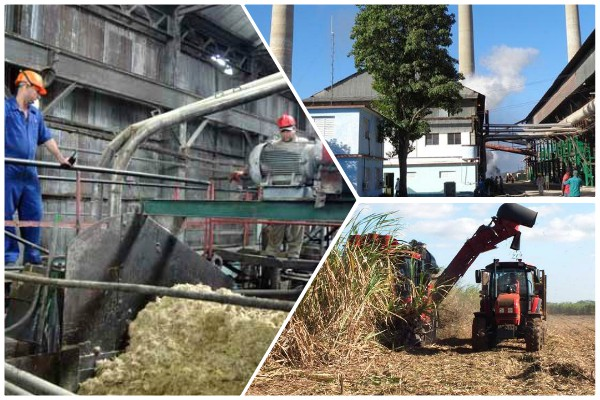 Decisivo marzo en Camagüey para la zafra azucarera